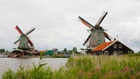 Kinderdijk Dutch Windmills and Flowers Stock Images