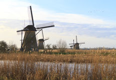 Kinderdijk early morning sun Royalty Free Stock Images