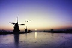 Kinderdijk - Gänse, die über Sonnenaufgang auf der gefrorenen Windmühlenausrichtung fliegen lizenzfreie stockfotografie