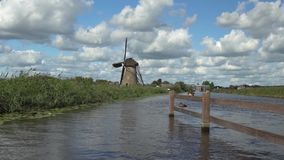 Kinderdijk in holland stock video