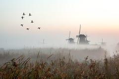 Kinderdijk i holland Fotografering för Bildbyråer