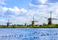 Kinderdijk Landscape Stock Photography