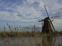Kinderdijk Royalty Free Stock Photography