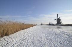 Kinderdijk no inverno Foto de Stock Royalty Free