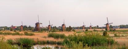 Kinderdijk panorama Arkivfoton