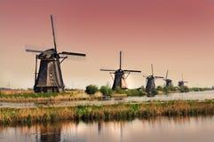 Kinderdijk väderkvarnar Royaltyfri Bild