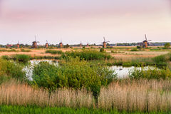 Kinderdijk view Royalty Free Stock Images