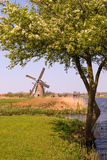 Kinderdijk Windmühle Lizenzfreie Stockfotos