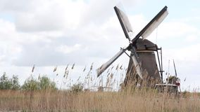 Kinderdijk Windmill stock footage