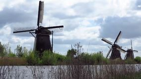 Kinderdijk Windmill stock video footage