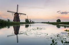 Kinderdijk Windmills at Dusk and Reflection in Water Royalty Free Stock Photo