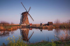 Kinderdijk windmills at sunrise Stock Photos