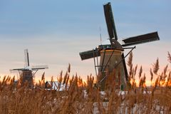 Kinderdijk Windmills in Winter Stock Photography
