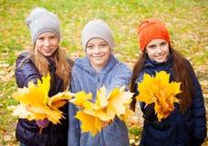 Kinderen bij de herfst Stock Afbeelding