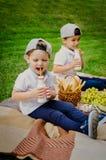 Kinderen bij een picknick op een groene weide stock afbeelding