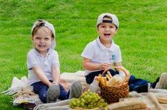 Kinderen bij een picknick op een groene weide stock afbeeldingen