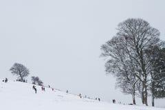 Kinderen die in de sneeuw spelen Stock Afbeeldingen
