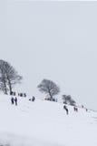 Kinderen die in de sneeuw spelen Stock Foto's