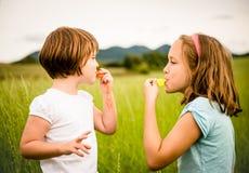 Kinderen die fluitje blazen stock afbeelding
