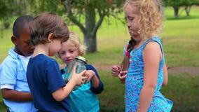 Kinderen die glascontainer bekijken stock video