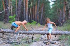 Kinderen die in het hout spelen stock foto