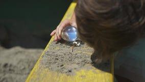Kinderen die houten branden door het vergrootglas in zonlicht, zonnestraal of zonneschijn stock videobeelden