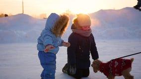 Kinderen die met een hond in de winter bij zonsondergang spelen stock videobeelden