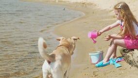 Kinderen die op het strand door de rivier op een zonnige dag spelen stock videobeelden