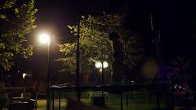 Kinderen die op trampoline bij nacht springen stock footage