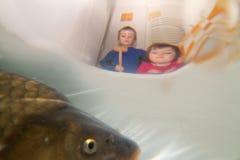 Kinderen die op vissen letten stock foto