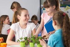 Kinderen die over installaties in schoolklasse leren royalty-vrije stock afbeeldingen