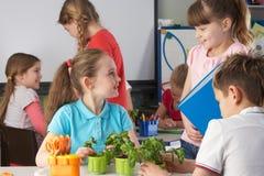 Kinderen die over installaties in schoolklasse leren stock foto
