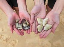 Kinderen die Pippies houden die zij bij strand i hebben verzameld Royalty-vrije Stock Fotografie