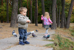 Kinderen die vogels voeden Royalty-vrije Stock Afbeeldingen