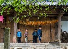 Kinderen en Graan Stock Foto's