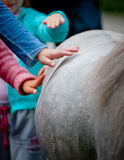 Kinderen en poney Stock Foto's