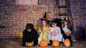 Kinderen in Halloween-Kostuums met Pompoenen stock footage
