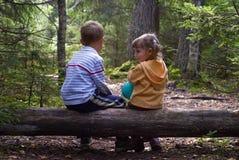 Kinderen in het bos Stock Foto's