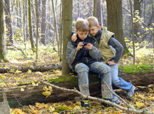 Kinderen in het hout worden verloren dat royalty-vrije stock afbeelding