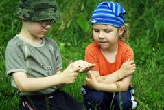 Kinderen met insect royalty-vrije stock fotografie