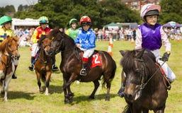 Kinderen op hun poneys van Shetland Royalty-vrije Stock Afbeelding