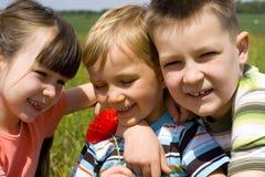 Kinderen op weide Stock Foto