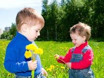 Kinderen op weidepaardebloem. royalty-vrije stock afbeelding