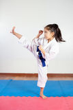 Kinderen tijdens opleiding in karate Het vechten positie Stock Foto