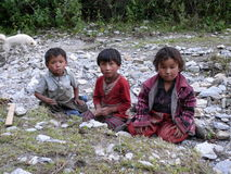 Kinderen van Chhokang Paro - Tsum-Vallei - Nepal royalty-vrije stock fotografie