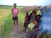 Kinderenarbeiders van Guinea-Bissau Royalty-vrije Stock Afbeeldingen