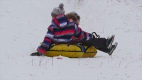 Kinderendia's van de berg in de sneeuw stock video