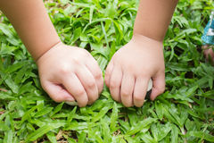 Kinderenhanden op gras Stock Afbeeldingen