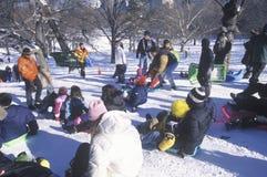 Kinderenslee het berijden in Central Park, de Stad van Manhattan, New York, NY na het onweer van de de wintersneeuw Royalty-vrije Stock Foto's