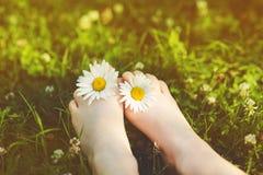 Kinderfüße mit Gänseblümchen blühen auf grünem Gras in einem Sommerpark In Lizenzfreie Stockfotografie